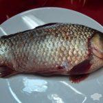 Рецепт: Рыба в кляре — в сырном кляре