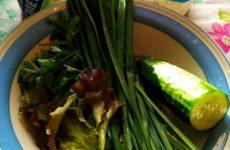 Рецепт: Творог с зеленью — Вкусно, необычно и очень полезно!