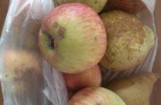 Рецепт: Компот из ягод и фруктов — грушевый компотик