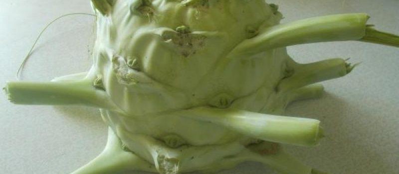 Рецепт: Отбивные из кольраби — во фритюре
