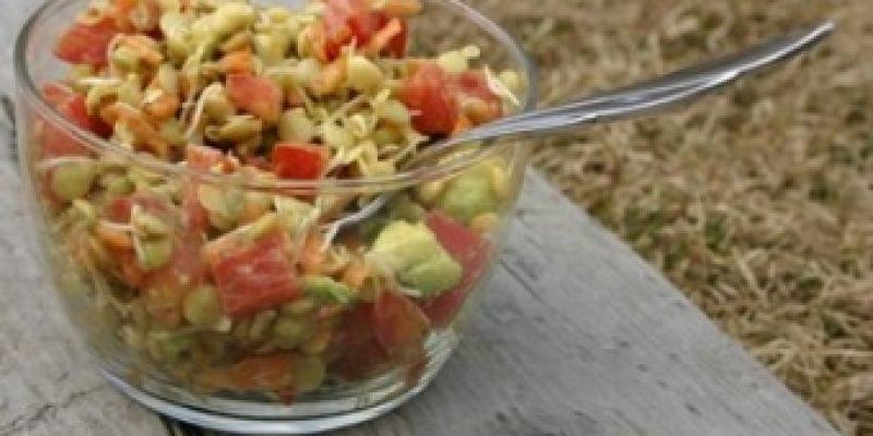 Салат из проросшей пшеницей
