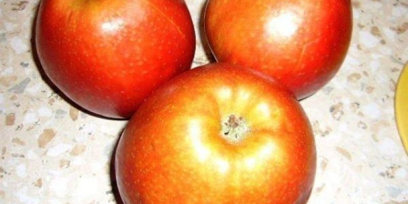 Рецепт: Яблочная шарлотка — Очень вкусно